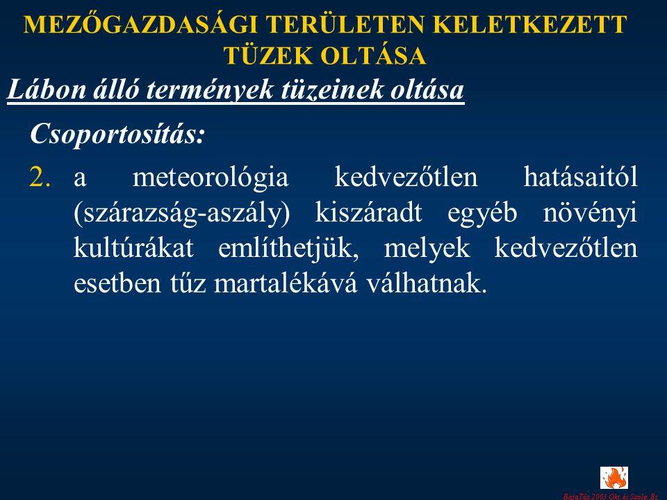 BajaTűz 2003 Okt. és Szolg. Bt. MEZŐGAZDASÁGI TERÜLETEN KELETKEZETT TÜZEK OLTÁSA Csoportosítás: 2.a meteorológia kedvezőtlen hatásaitól (szárazság-asz