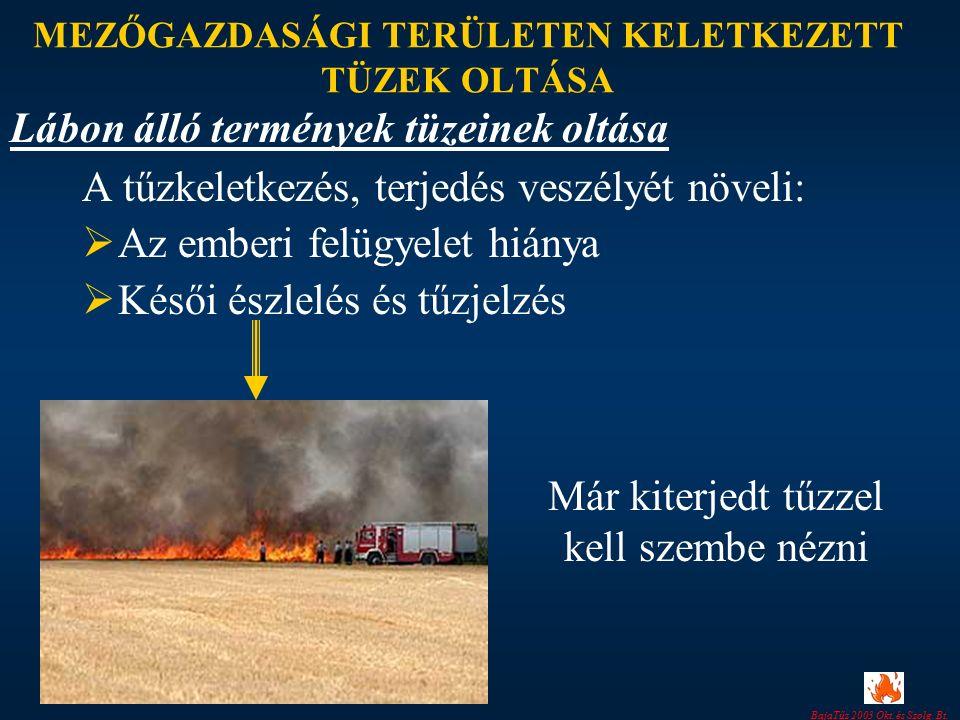 BajaTűz 2003 Okt. és Szolg. Bt. MEZŐGAZDASÁGI TERÜLETEN KELETKEZETT TÜZEK OLTÁSA A tűzkeletkezés, terjedés veszélyét növeli:  Az emberi felügyelet hi