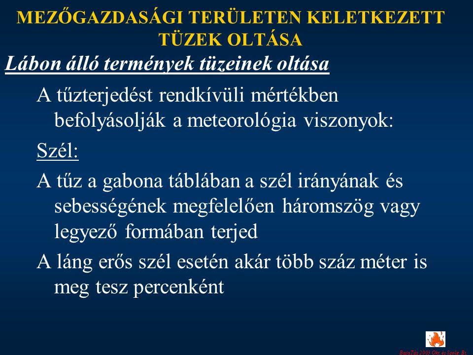 BajaTűz 2003 Okt. és Szolg. Bt. MEZŐGAZDASÁGI TERÜLETEN KELETKEZETT TÜZEK OLTÁSA A tűzterjedést rendkívüli mértékben befolyásolják a meteorológia visz