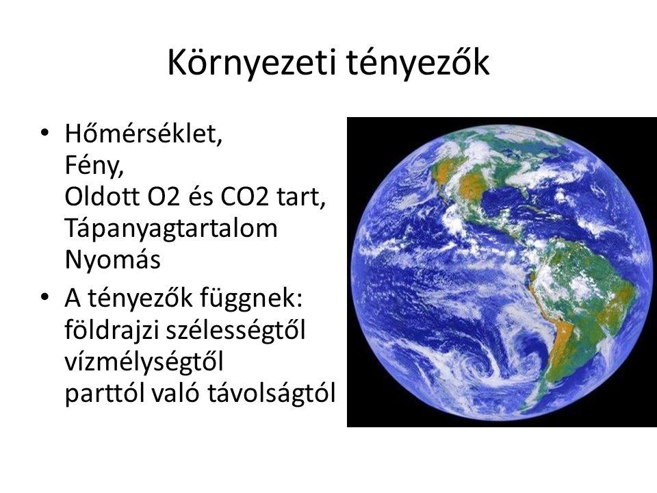 Környezeti tényezők Hőmérséklet, Fény, Oldott O2 és CO2 tart, Tápanyagtartalom Nyomás A tényezők függnek: földrajzi szélességtől vízmélységtől parttól való távolságtól
