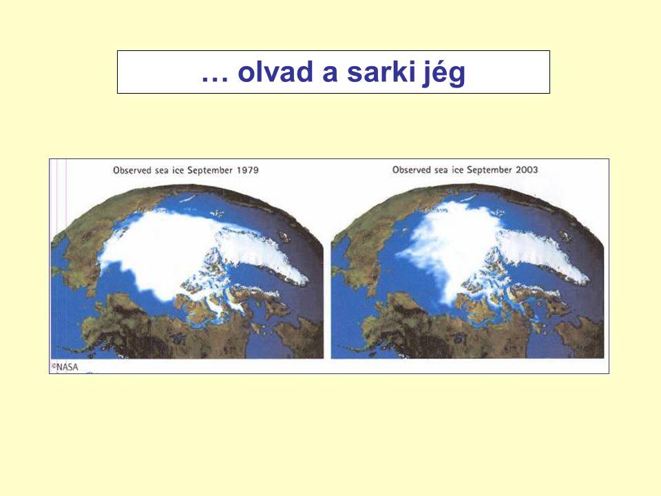 - évi lefolyás csökken - kisebb (alföldi) tavak kiszáradnak - nagytavak vízcseréje lassul - gyakoribb és súlyosabb aszályok Az ariditás növekedésének várható következményei