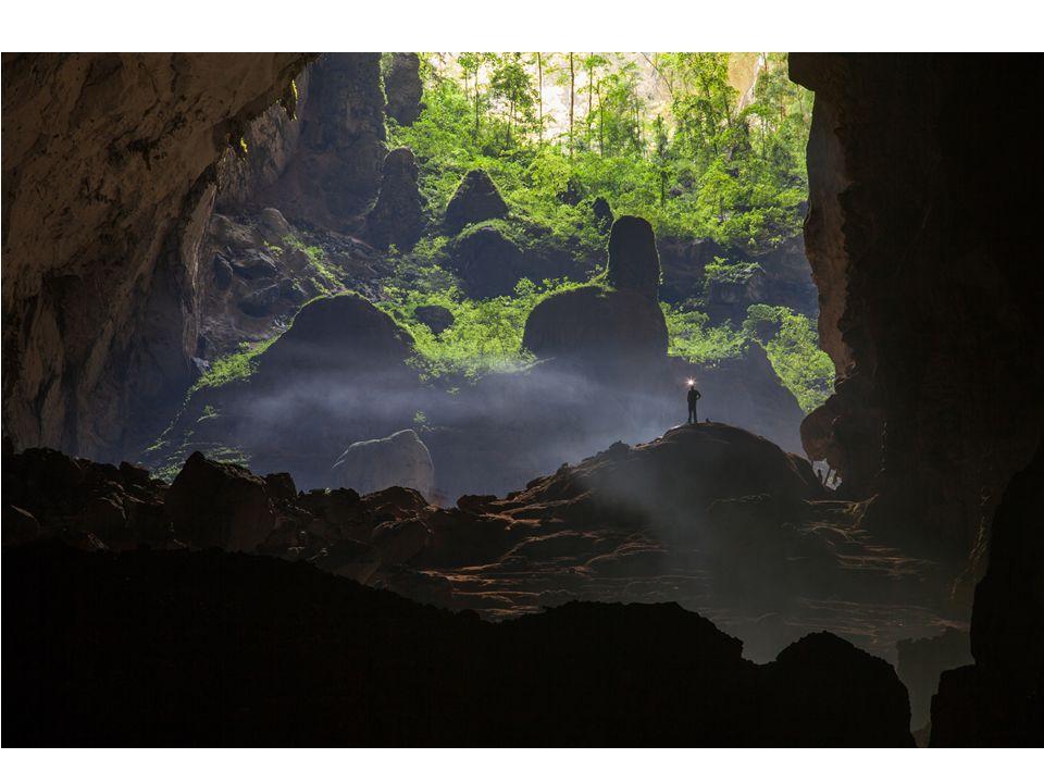 A barlangban háborítatlanul él számtalan majom, denevér és más állat. A vegetáció csodálatos.