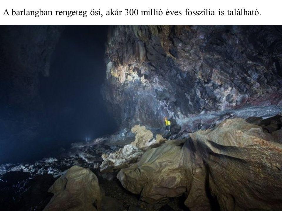 Barlangi tó A kutya - mancs sztalagmit
