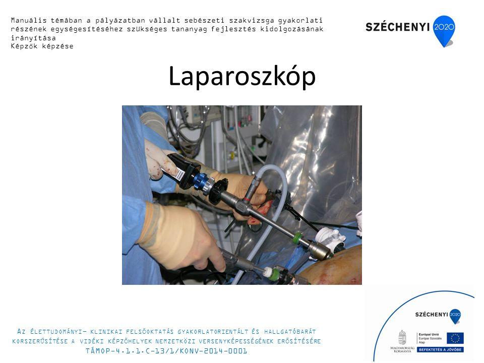 Laparoszkóp Manuális témában a pályázatban vállalt sebészeti szakvizsga gyakorlati részének egységesítéséhez szükséges tananyag fejlesztés kidolgozásának irányítása Képzők képzése A Z ÉLETTUDOMÁNYI - KLINIKAI FELSŐOKTATÁS GYAKORLATORIENTÁLT ÉS HALLGATÓBARÁT KORSZERŰSÍTÉSE A VIDÉKI KÉPZŐHELYEK NEMZETKÖZI VERSENYKÉPESSÉGÉNEK ERŐSÍTÉSÉRE TÁMOP-4.1.1.C-13/1/KONV-2014-0001