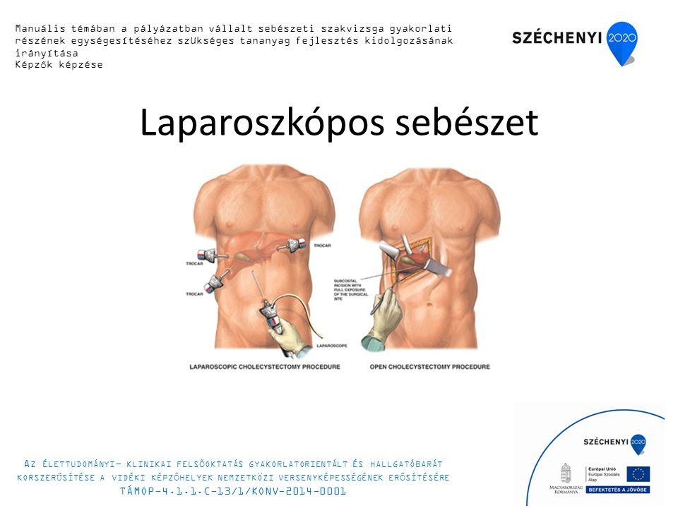 Laparoszkópos sebészet 5 Manuális készségfejlesztő tanfolyam 2014.
