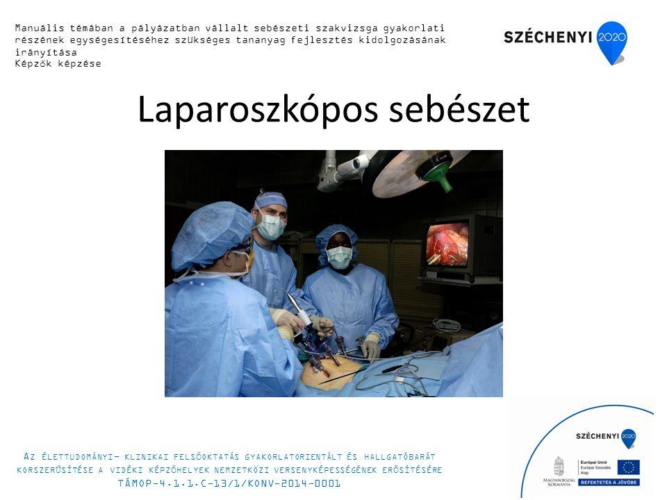 Laparoszkópos sebészet 6 Manuális készségfejlesztő tanfolyam 2014.