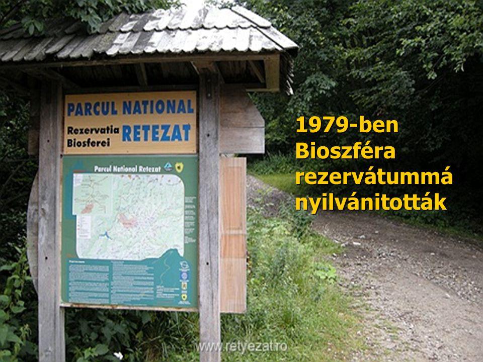 1979-ben Bioszféra rezervátummá nyilvánitották