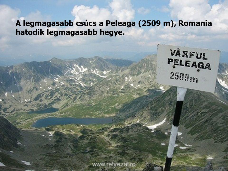 A legmagasabb csúcs a Peleaga (2509 m), Romania hatodik legmagasabb hegye.