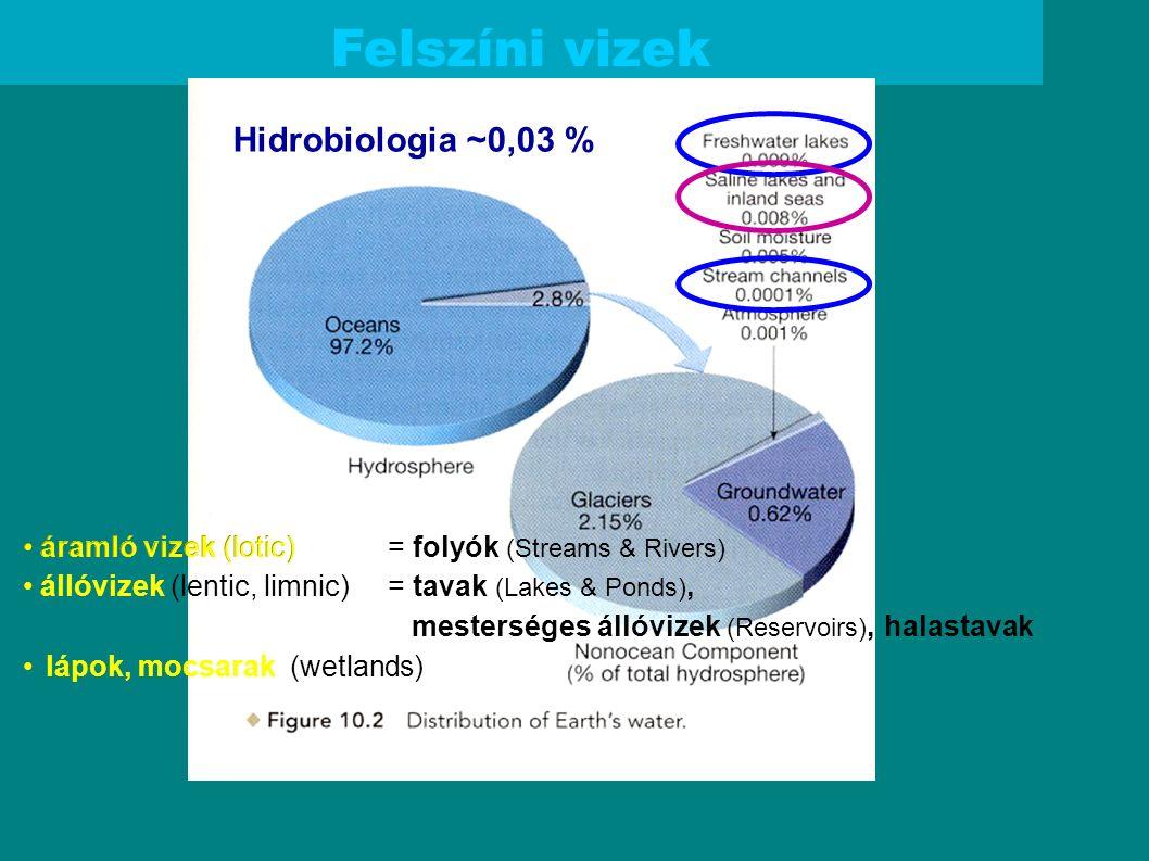 Felszíni vizek Hidrobiologia ~0,03 % = folyók (Streams & Rivers) = tavak (Lakes & Ponds), mesterséges állóvizek (Reservoirs), halastavak