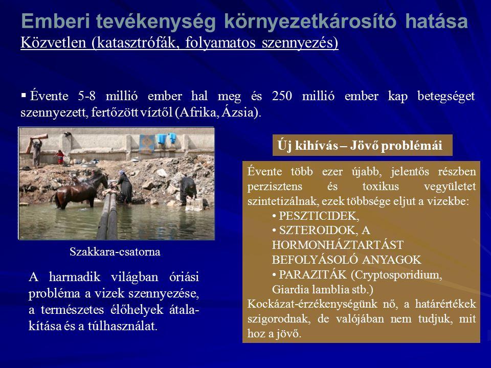 Közvetlen (katasztrófák, folyamatos szennyezés) Szakkara-csatorna  Évente 5-8 millió ember hal meg és 250 millió ember kap betegséget szennyezett, fertőzött víztől (Afrika, Ázsia).