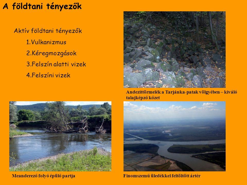 A földtani tényezők Aktív földtani tényezők 1.Vulkanizmus 2.Kéregmozgások 3.Felszín alatti vizek 4.Felszíni vizek Meanderező folyó épülő partjaFinomsz