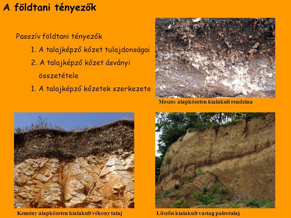 A földtani tényezők Passzív földtani tényezők 1. A talajképző kőzet tulajdonságai 2. A talajképző kőzet ásványi összetétele 1. A talajképző kőzetek sz