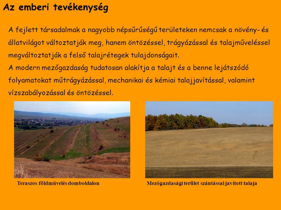 Az emberi tevékenység A fejlett társadalmak a nagyobb népsűrűségű területeken nemcsak a növény- és állatvilágot változtatják meg, hanem öntözéssel, trágyázással és talajműveléssel megváltoztatják a felső talajrétegek tulajdonságait.