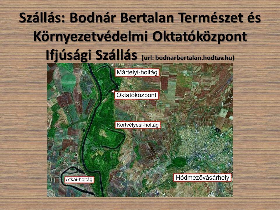 Szállás: Bodnár Bertalan Természet és Környezetvédelmi Oktatóközpont Ifjúsági Szállás (url: bodnarbertalan.hodtav.hu)