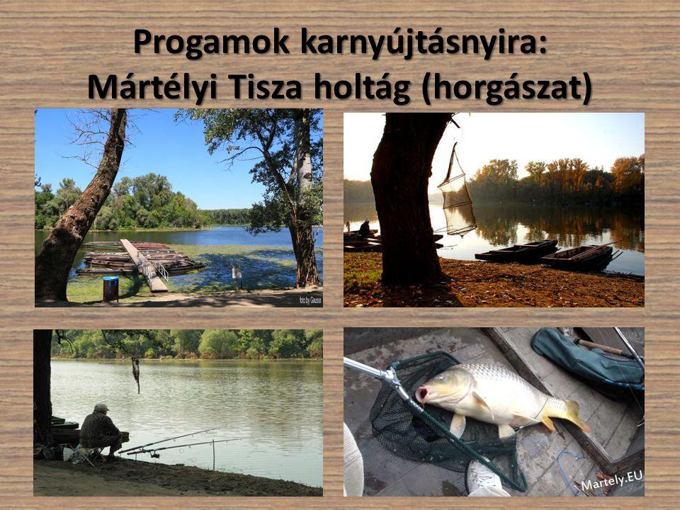 Progamok karnyújtásnyira: Mártélyi Tisza holtág (horgászat)