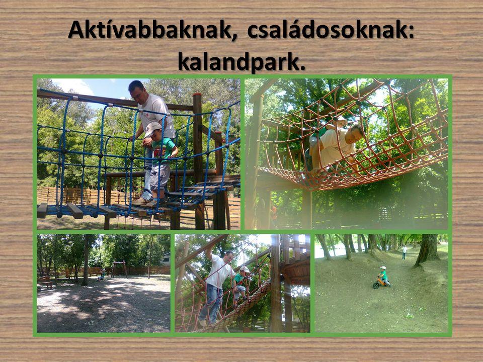 Aktívabbaknak, családosoknak: kalandpark.