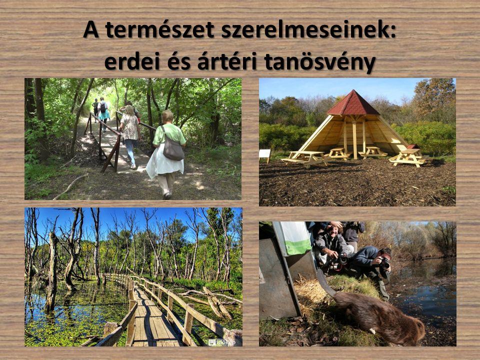 A természet szerelmeseinek: erdei és ártéri tanösvény