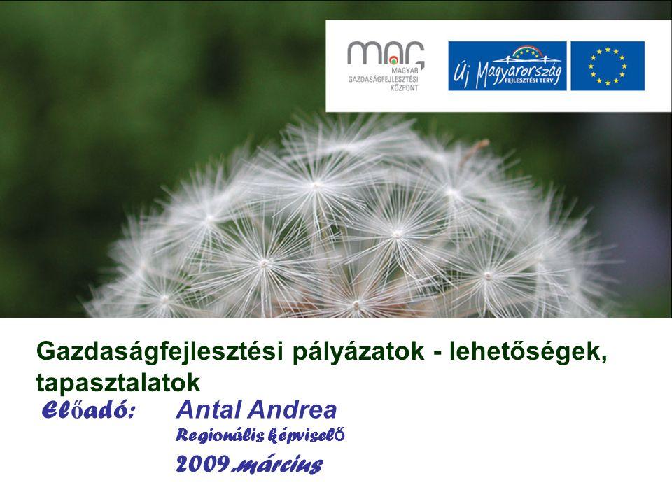 Gazdaságfejlesztési pályázatok - lehetőségek, tapasztalatok El ő adó: Antal Andrea Regionális képvisel ő 2009.március