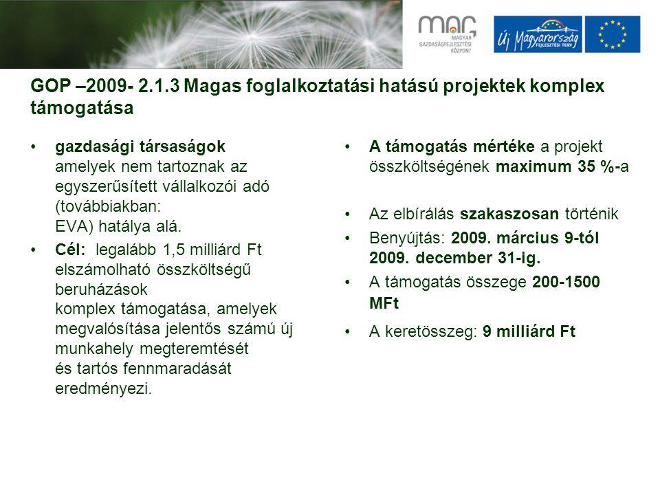 GOP –2009- 2.1.3 Magas foglalkoztatási hatású projektek komplex támogatása gazdasági társaságok amelyek nem tartoznak az egyszerűsített vállalkozói ad
