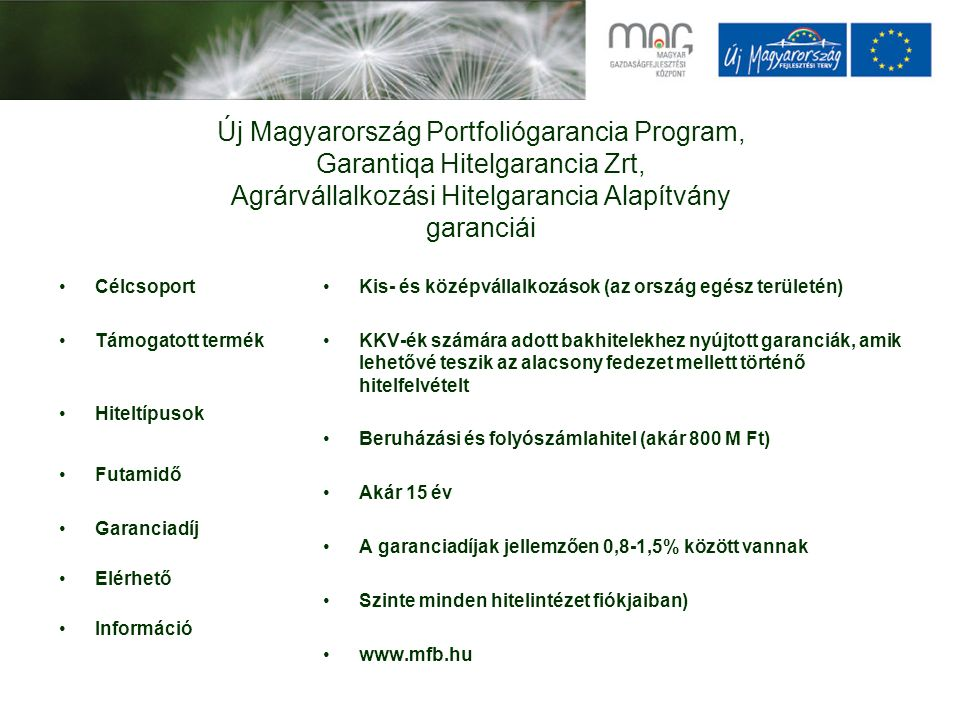 Új Magyarország Portfoliógarancia Program, Garantiqa Hitelgarancia Zrt, Agrárvállalkozási Hitelgarancia Alapítvány garanciái Célcsoport Támogatott ter