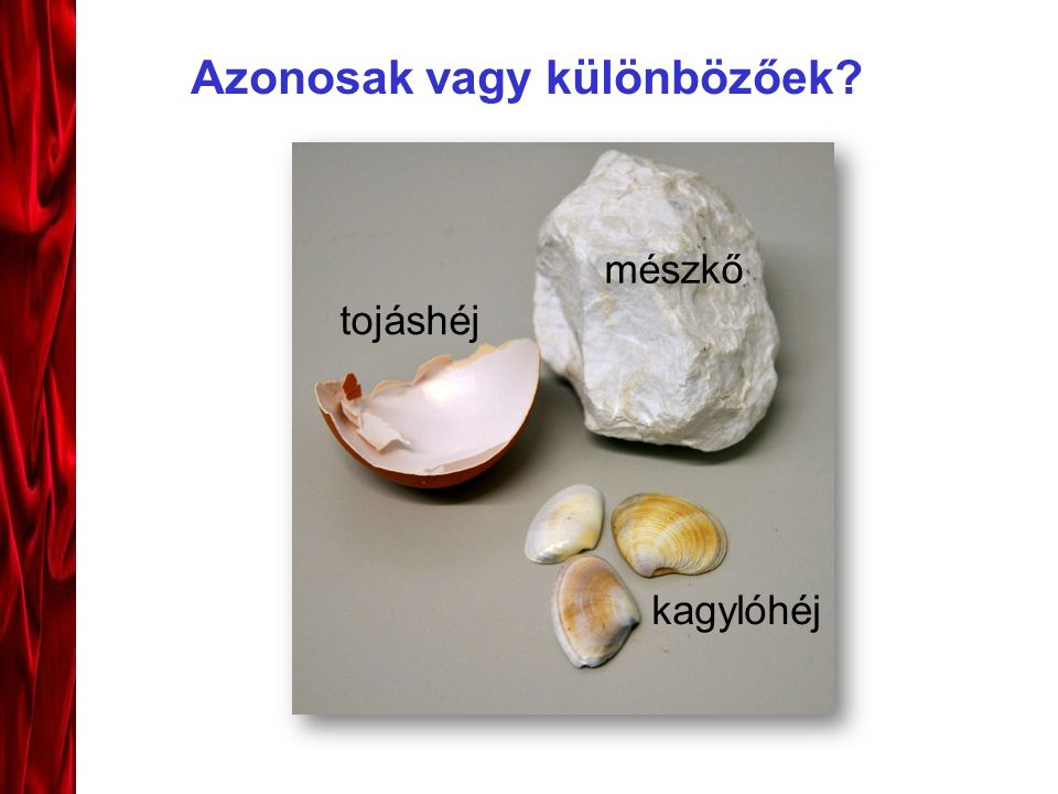 Azonosak vagy különbözőek? mészkő kagylóhéj tojáshéj