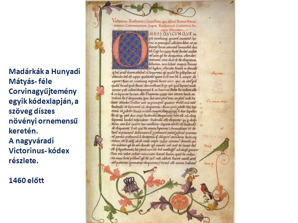 Madárkák a Hunyadi Mátyás- féle Corvinagyűjtemény egyik kódexlapján, a szöveg díszes növényi ornemensű keretén.