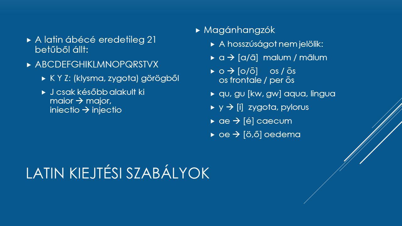 LATIN KIEJTÉSI SZABÁLYOK  A latin ábécé eredetileg 21 betűből állt:  ABCDEFGHIKLMNOPQRSTVX  K Y Z: (klysma, zygota) görögből  J csak később alakul