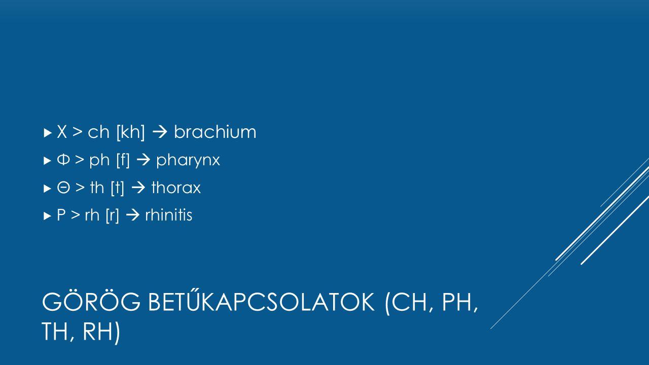  Χ > ch [kh]  brachium  Φ > ph [f]  pharynx  Θ > th [t]  thorax  Ρ > rh [r]  rhinitis GÖRÖG BETŰKAPCSOLATOK (CH, PH, TH, RH)