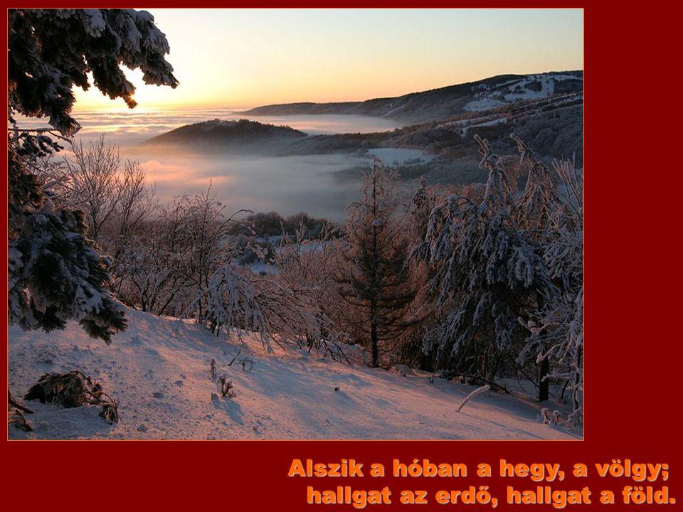 Nyitni kék! Ébred a hegy, a völgy, tudom, mire gondol a néma föld.