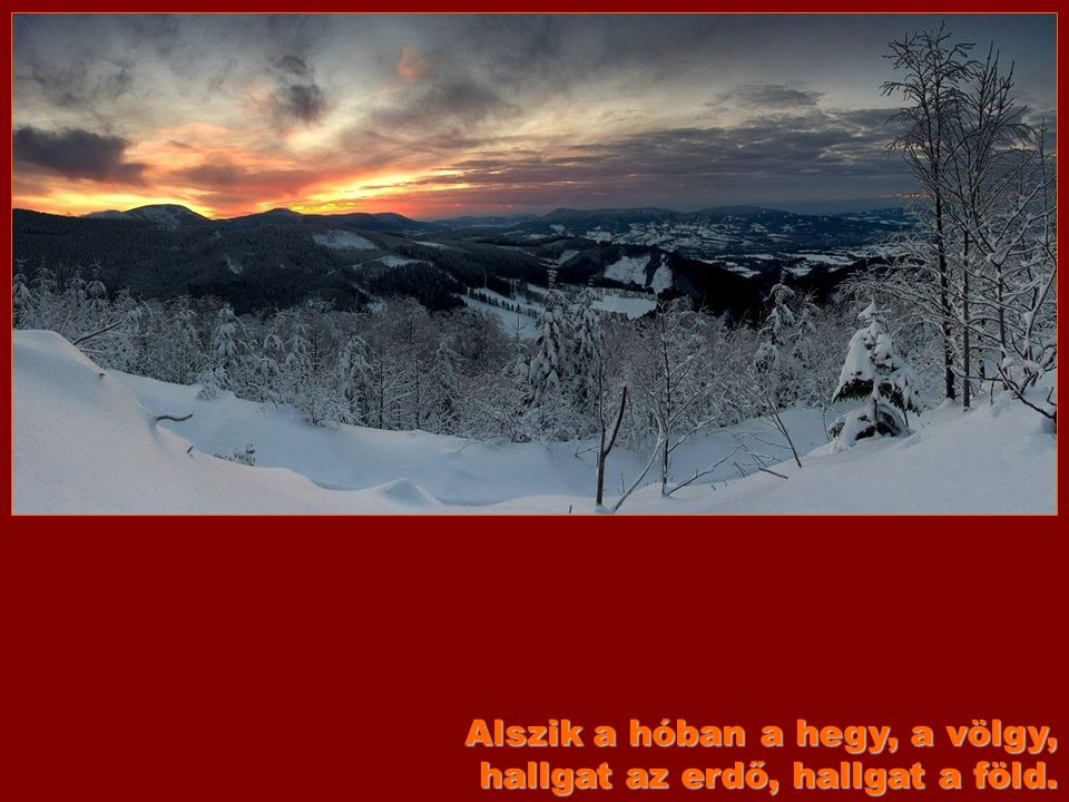 Alszik a hóban a hegy, a völgy, hallgat az erdő, hallgat a föld.