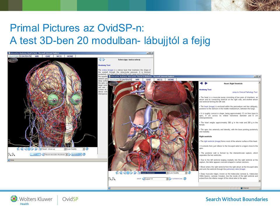 Primal Pictures az OvidSP-n: A test 3D-ben 20 modulban- lábujjtól a fejig