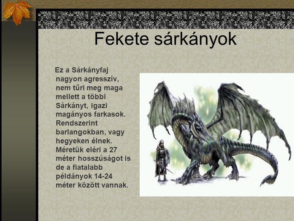Fekete sárkányok Ez a Sárkányfaj nagyon agresszív, nem tűri meg maga mellett a többi Sárkányt, igazi magányos farkasok.