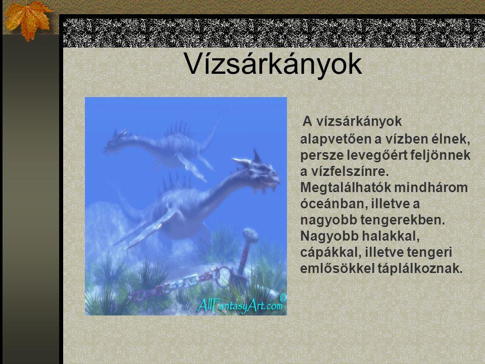 Vízsárkányok A vízsárkányok alapvetően a vízben élnek, persze levegőért feljönnek a vízfelszínre.