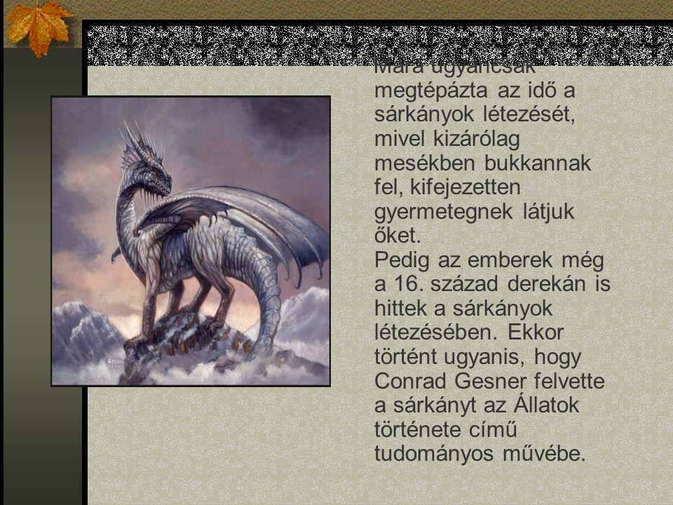A sárkány magában foglalja a hüllőt és a madarat, azaz a föld és a levegő elemeit.