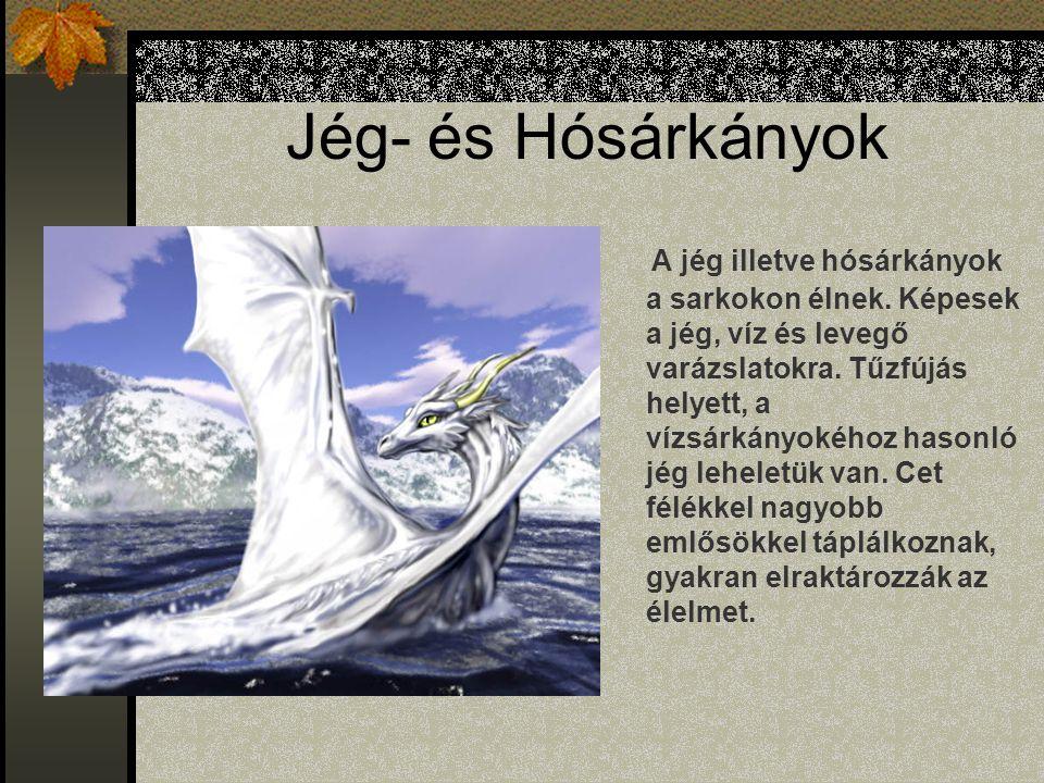 Jég- és Hósárkányok A jég illetve hósárkányok a sarkokon élnek.