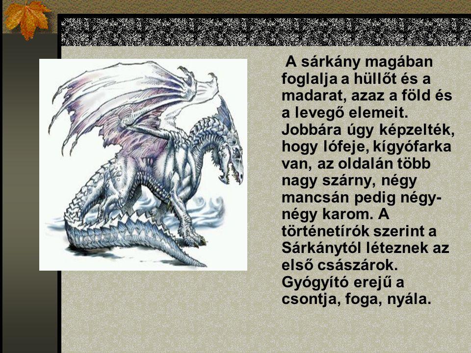 A sárkány anatómiája