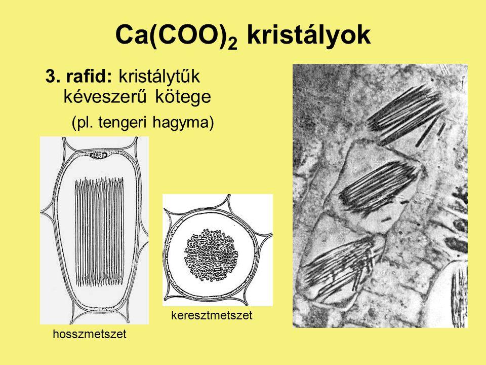 Ca(COO) 2 kristályok 2. tetragonális oszlopok, piramisok (pl.