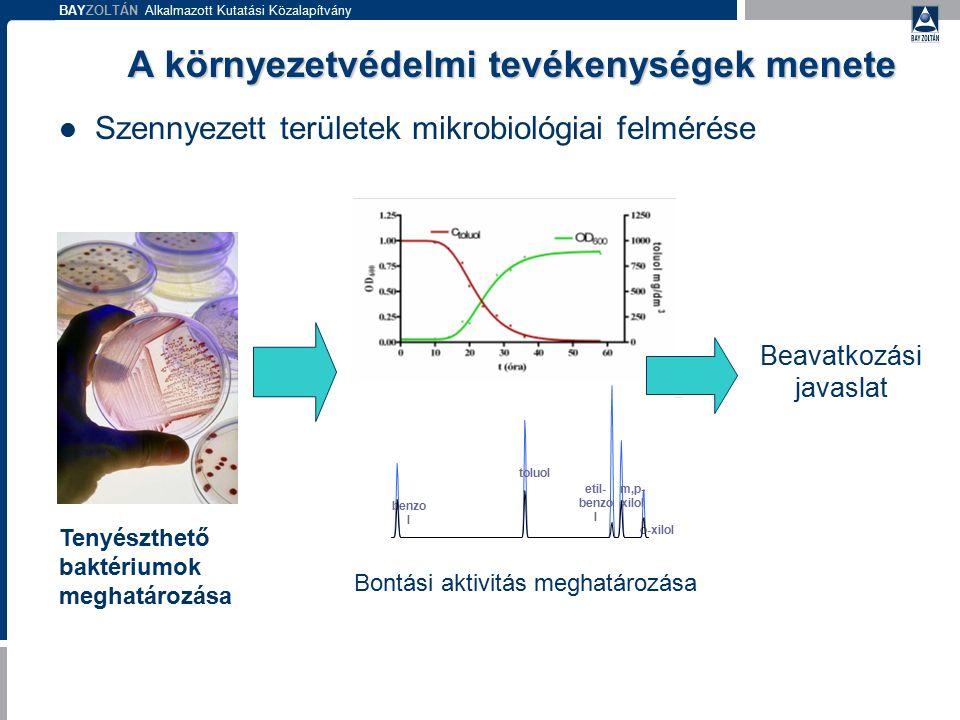 BAYZOLTÁN Alkalmazott Kutatási Közalapítvány A környezetvédelmi tevékenységek menete Szennyezett területek mikrobiológiai felmérése Tenyészthető bakté