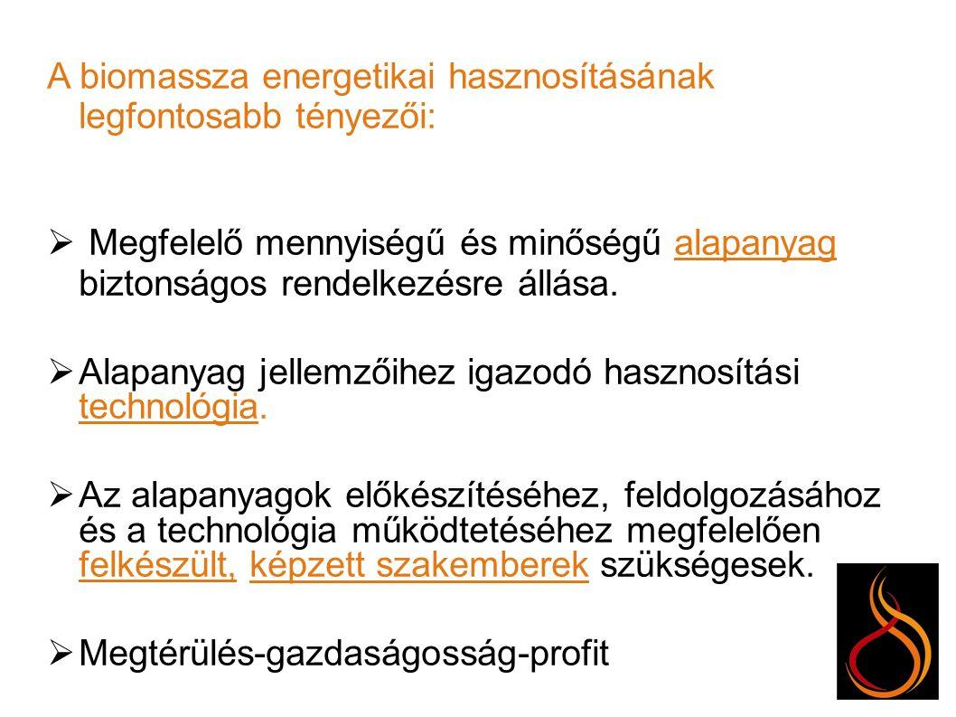 Köszönöm a figyelmüket.Zsófi János Megújuló Energiaforrás Energetikus Zsófi Team Kft.
