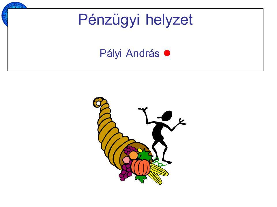 Pénzügyi helyzet Pályi András