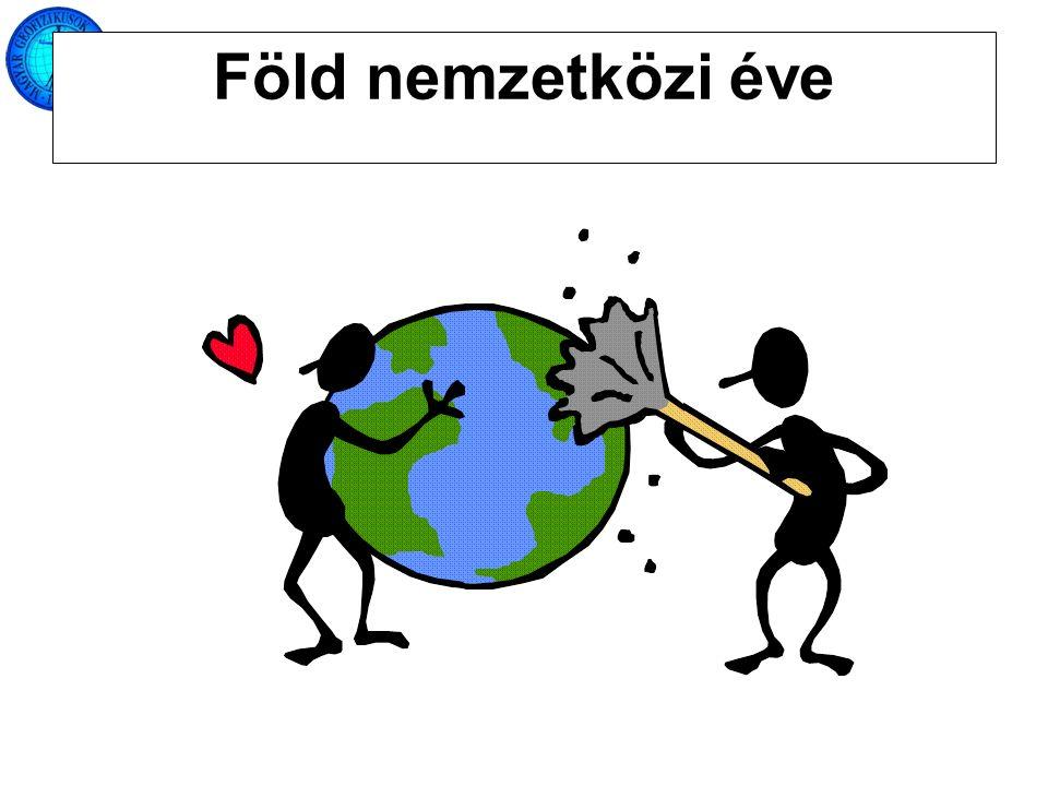 Föld nemzetközi éve