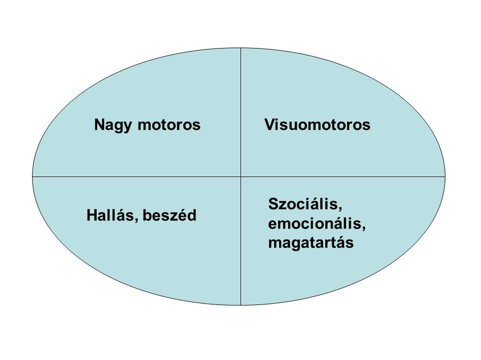 Nagy motorosVisuomotoros Hallás, beszéd Szociális, emocionális, magatartás