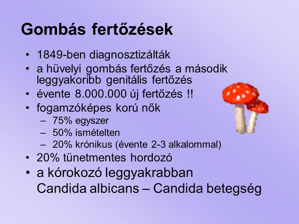 Gombás fertőzések 1849-ben diagnosztizálták a hüvelyi gombás fertőzés a második leggyakoribb genitális fertőzés évente 8.000.000 új fertőzés !! fogamz