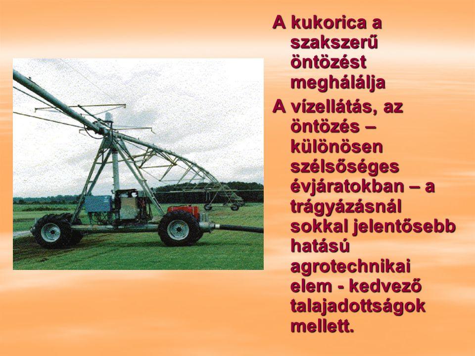 A kukorica a szakszerű öntözést meghálálja A vízellátás, az öntözés – különösen szélsőséges évjáratokban – a trágyázásnál sokkal jelentősebb hatású agrotechnikai elem - kedvező talajadottságok mellett.