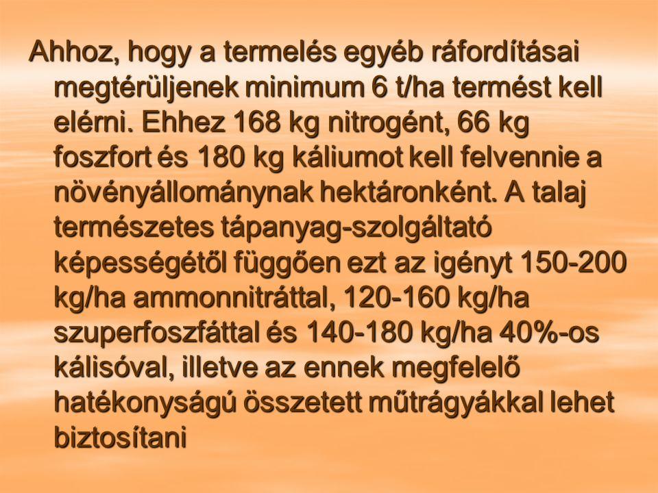Ahhoz, hogy a termelés egyéb ráfordításai megtérüljenek minimum 6 t/ha termést kell elérni.