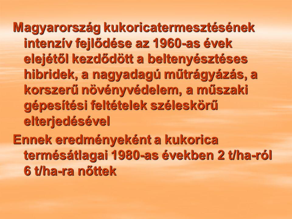 Magyarország kukoricatermesztésének intenzív fejlődése az 1960-as évek elejétől kezdődött a beltenyésztéses hibridek, a nagyadagú műtrágyázás, a korszerű növényvédelem, a műszaki gépesítési feltételek széleskörű elterjedésével Ennek eredményeként a kukorica termésátlagai 1980-as években 2 t/ha-ról 6 t/ha-ra nőttek