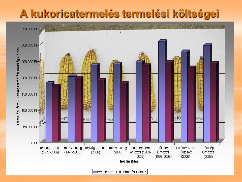 A kukoricatermelés termelési költségei