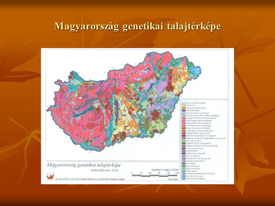 Magyarország genetikai talajtérképe