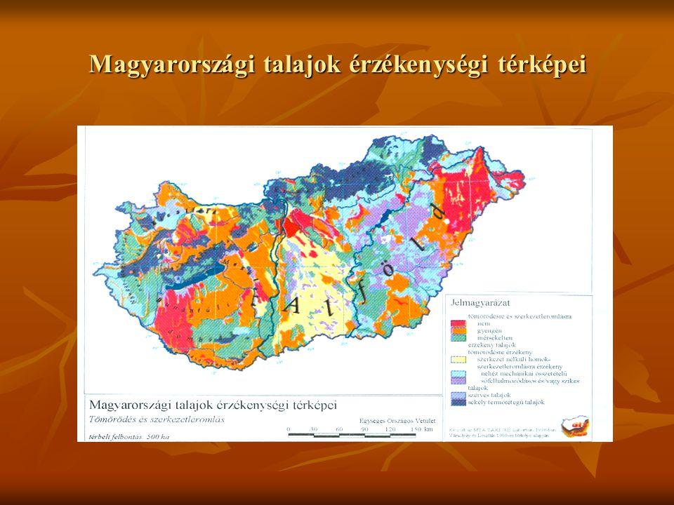 A talaj vízháztartásának ökológiai összefüggései és befolyásolásának lehetőségei