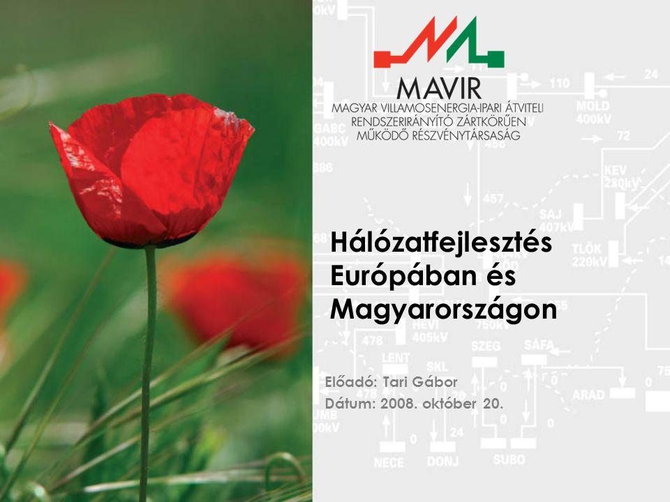 Tervezett felújítások Alállomások 750 kV: 2010 - 12: Albertirsa(?) 400 kV: 2007-2008: Albertirsa 220 kV: 2008: Győr, Szolnok, (Albertfalva), (Tiszalök) 2010: (Detk), (Kisvárda), (Sajószöged), (Zugló), Oroszlány (?) 120 kV: 2008: Göd, Felsőzsolca, Győr, Sajóivánka, Sajószöged, Tiszalök 2008-2009: Debrecen, Dunaújváros, 2009: Oroszlány 2010: Zugló középfeszültség: elkészült Távvezetékek Állapot: Több mint 250 km 35-40 éves 400 kV-os távvezeték Több mint 10 000 db 400 kV-os HR szigetelőlánc Rekonstrukciók, szigetelőcserék: 2007-2008 : 400 kV : Paks-Sándorfalva, Hévíz –Litér, Paks – Martonvásár, Paks – Litér 220 kV : Göd – Zugló, Detk – Zugló I., Detk – Sajószöged I., Sajószöged – Debrecen 2008-2009 : Martonvásár – Litér 400 kV 2009-2010 : Felsőzsolca – Sajóivánka, Győr – Bécs, Győr - Bős, Albertirsa-Békéscsaba, Hévíz-Toponár 400 kV